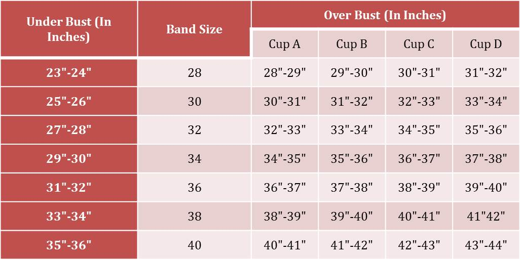 Finding the Right Bra Size
